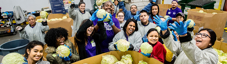 group of volunteers with cabbage